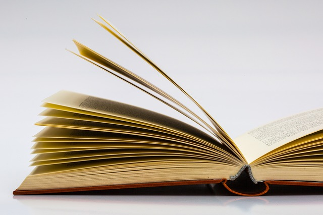 books-683897_640